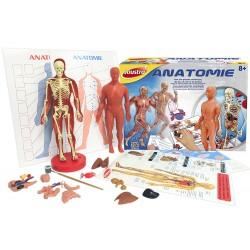 Joustra - 47001 - Jeu Éducatif et Scientifique - Jeu Scientifique - Anatomie