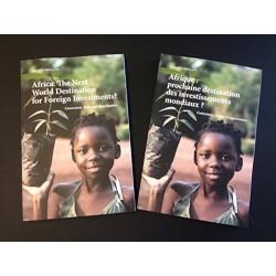 Afrique: Prochaine destination des investissements mondiaux?